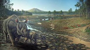 A bend in a river deposited a large concentration of mammals 40 million years ago.