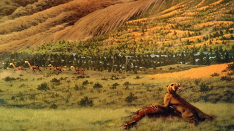 Welcome to the semiarid wooded shrubland with giant sloths and saber toothed felines.