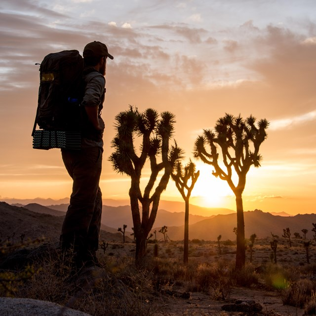 a hiker wearing a large backpack looks towards the horizon at a colorful sunset