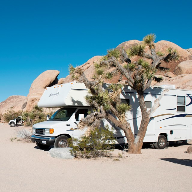 Color photo of RVs in sites at Belle Campground with rock formations and Joshua trees nearby.