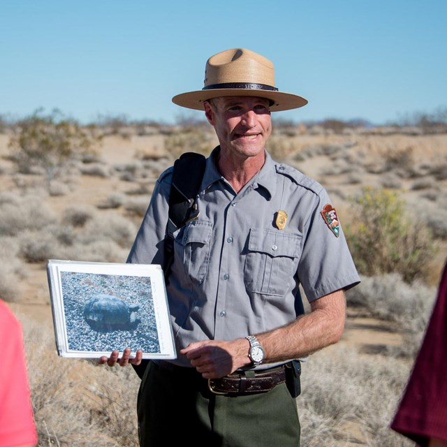 a ranger holds a photo of a desert tortoise while giving a talk to visitors