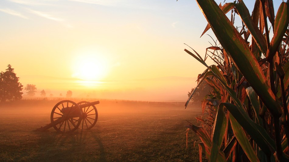 Civil War artillery in a farm field at sunrise