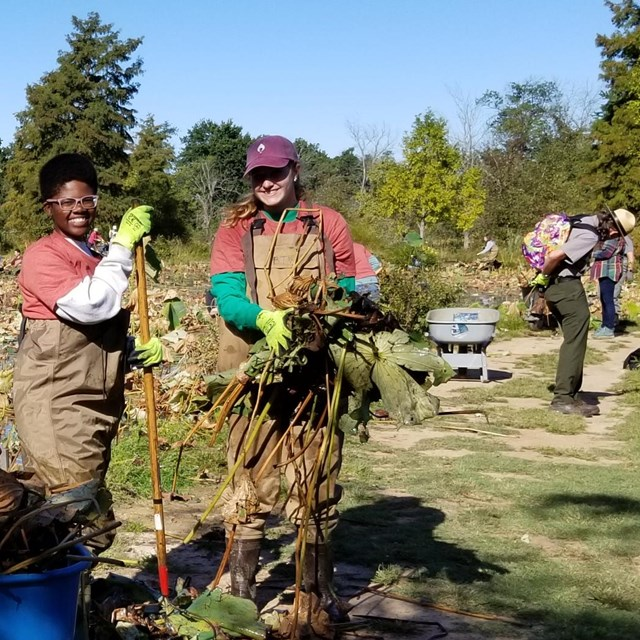 Volunteer at the gardens