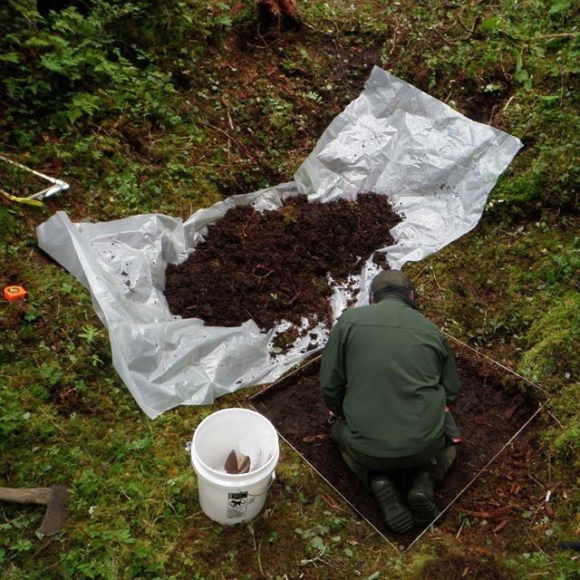A person kneels in a dug pit with the dirt piled on a sheet next to them.