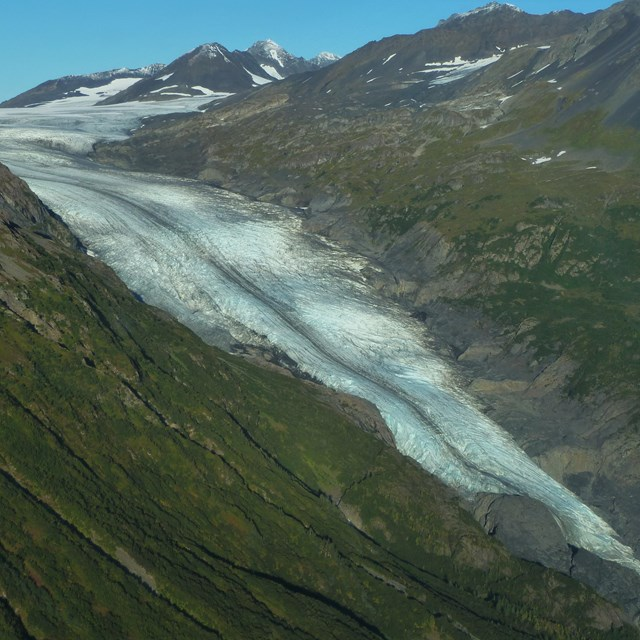 A glacier flowing between two plant covered mountainsides.
