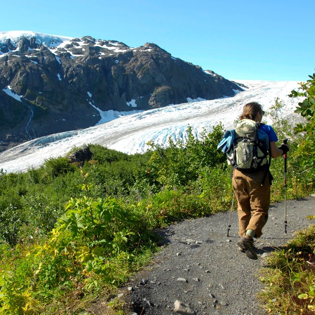 Hiker on trail through green grassy meadow with mountain in background and Exit Glacier.