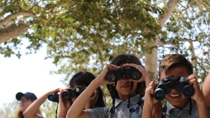 A group of kids look toward the camera through binoculars.