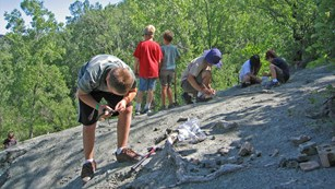 Several kids are looking for fossils on flat bolders.