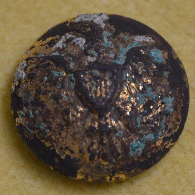 Close up of button with eagle and shield and some tarnish