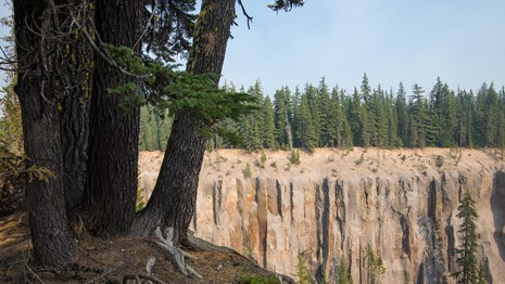 Rock cliff with trees in foreground in Crater Lake National Park