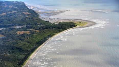 An aerial image of green trees and sandy beaches meeting blue ocean.