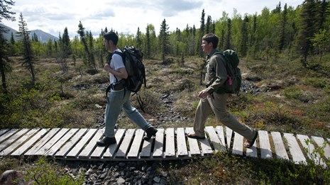 Two hikers on a boardwalk through the tundra