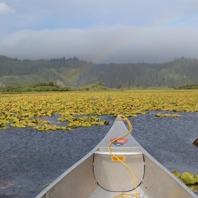 a canoe displaying an NPS arrowhead floats on a lily pad covered lake