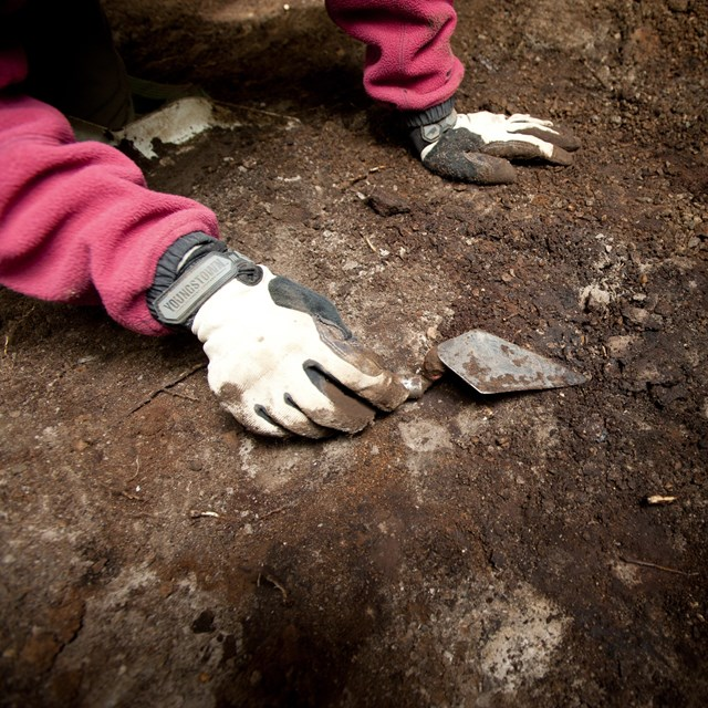 a close-up of gloved hands working digging with a trowel at an archeological site