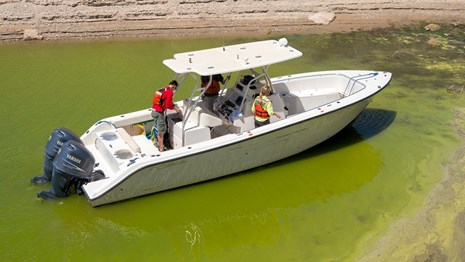 Boat in water full of bluegreen algae