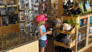 A girl holds a stuffed owl at a store
