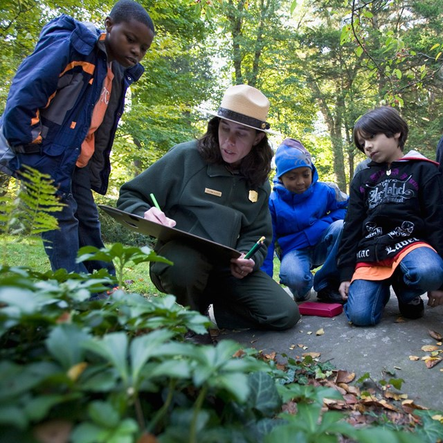 Park ranger drawing a picture for kids in the forest