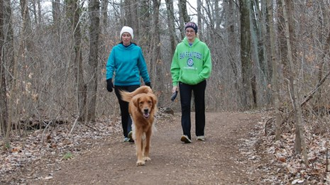Visit the park and hike the trails with your pets.
