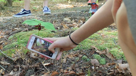 iNaturalist Cell phone app - hand with cell phone