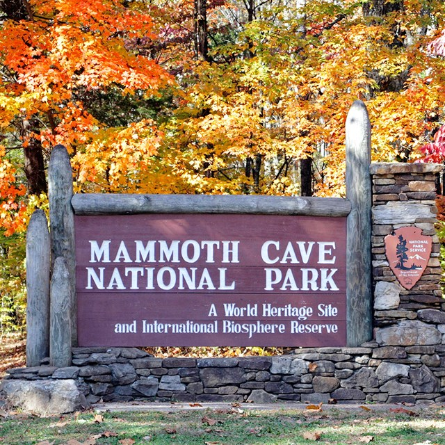 The park's entrance sign, surrounded by yellow, orange and red fall leaves.