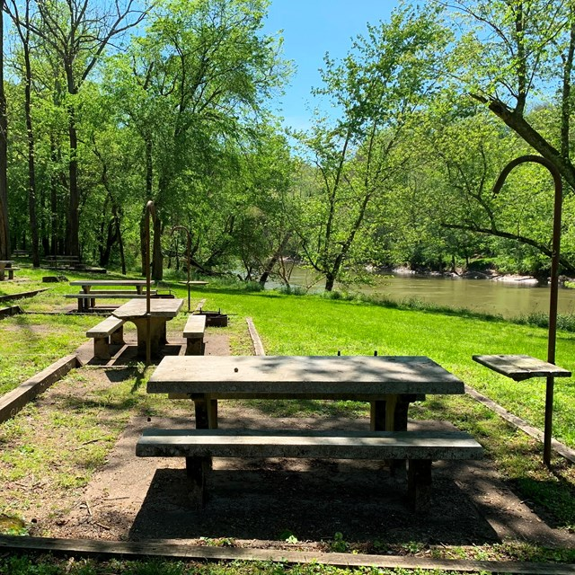 Campsites with picnic tables next to a tree lined river.