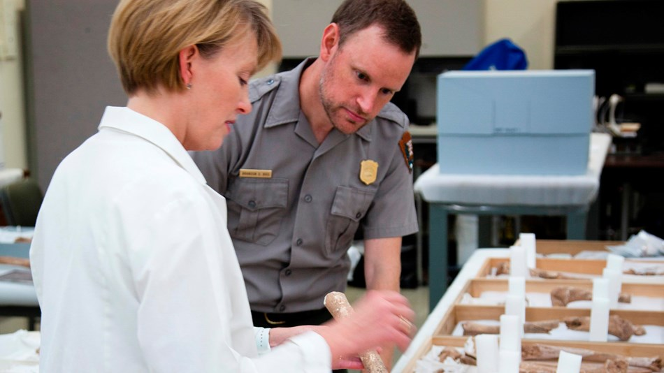 Superintendent Brandon Bies inspects a bone fragment with forensic anthropologist Kari Bruwelheide