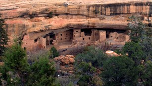 View of Spruce Tree House from across the canyon.