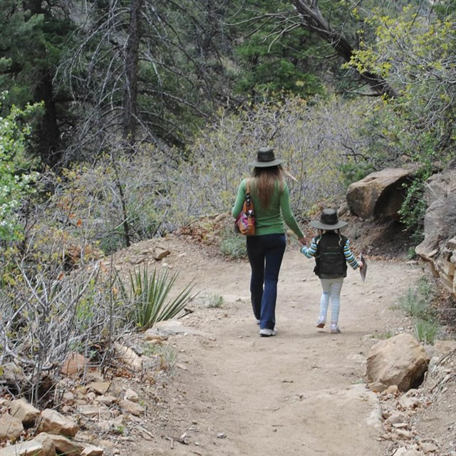 Woman and child hiking on dirt trail.