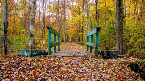 Trail over a wooden bridge and through the forest at Gettysburg National Millitary Park in the fall