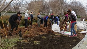 Volunteers spread mulch with rakes at the Martin Luther King, Jr. Memorial