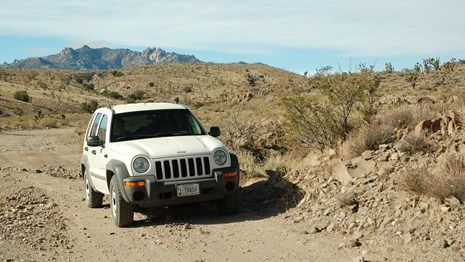 A white jeep driving safely on a dirt road with desert creosote and mountains in the background.