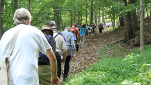 Group of visitors walking the wooded Brooks Hill Trail