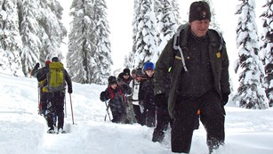 A ranger leads a group of people on snowshoes through a snowy forest.