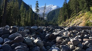 A rock-filled river valley with Mount Rainier framed by forested hillsides in the distance.