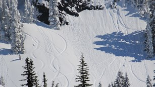 Ski tracks curve down a snowy mountain slope.