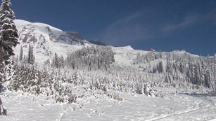 Mount Rainier and the Paradise meadows covered in snow.