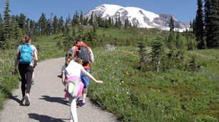 A family walks along a trail through a meadow with a view of Mount Rainier.