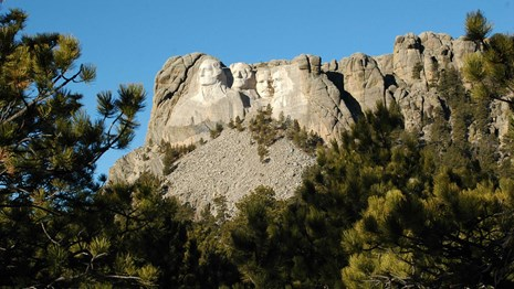 Mount Rushmore bathed in warm sunlight surrounded by ponderosa pine trees.
