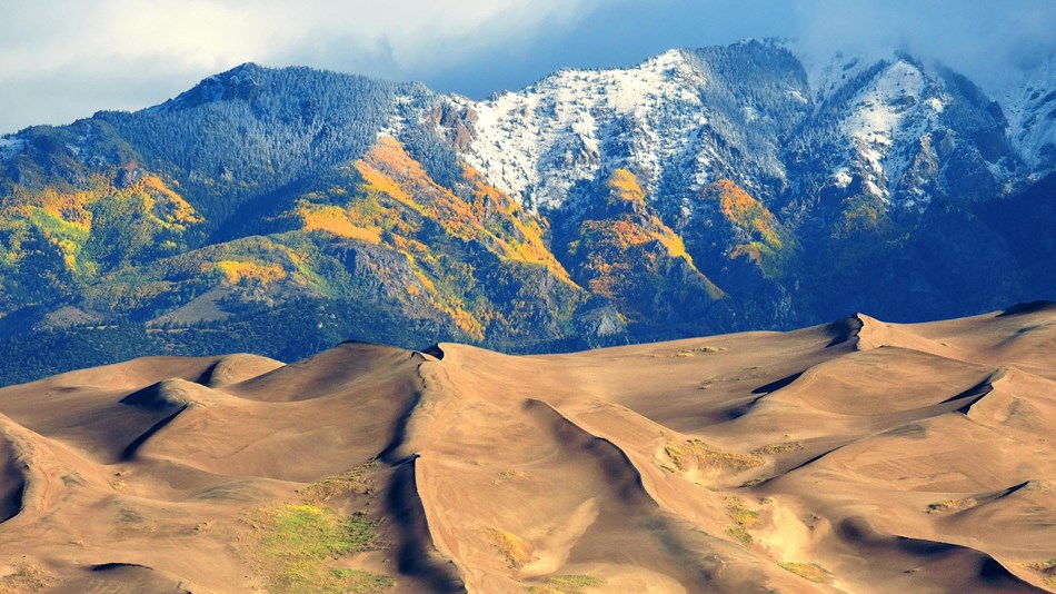 Tall snow capped mountains with golden aspen slopes rise above sand dunes and a grassy valley floor.