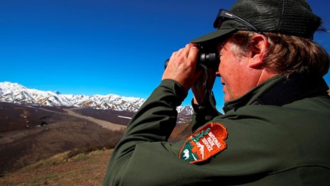 male ranger points binoculars at snowy mountain range in the distance