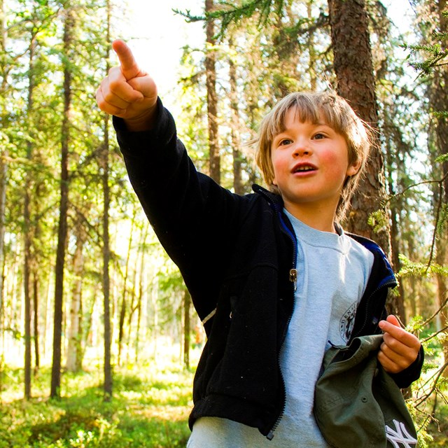 a young boy points to something in the woods