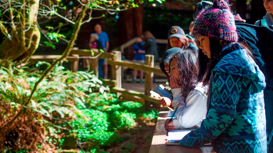Two children complete their Junior Ranger Books while standing on a bridge at Muir Woods
