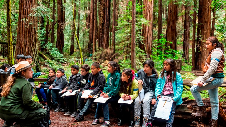 A ranger sits in front of a group of children in the middle of a redwood grove