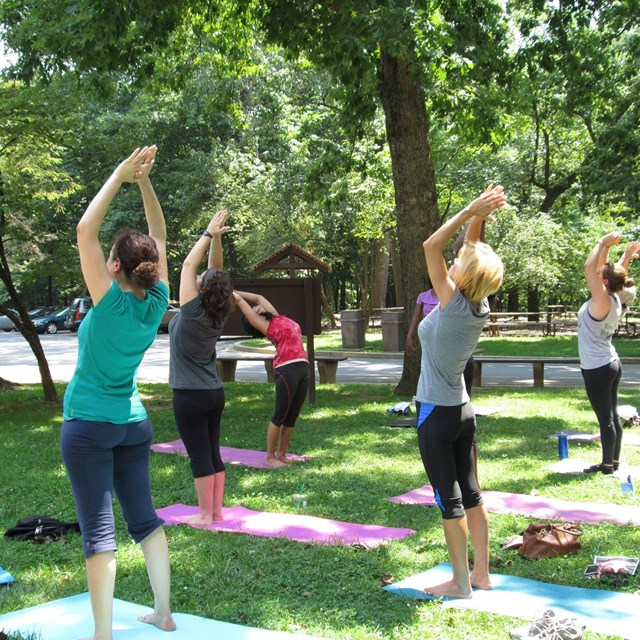 Group doing yoga poses on mats in a park