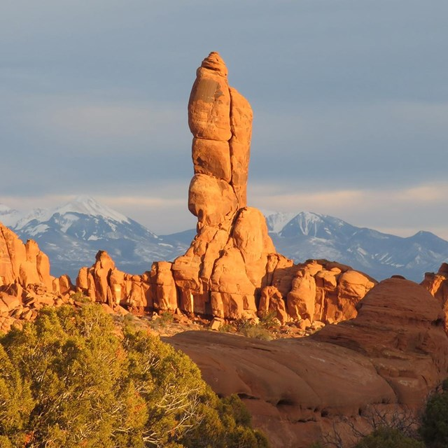 Red rock spires with mountains in background and juniper in foreground