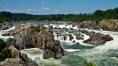 The green waters of the Potomac crash through Great Falls rocks.