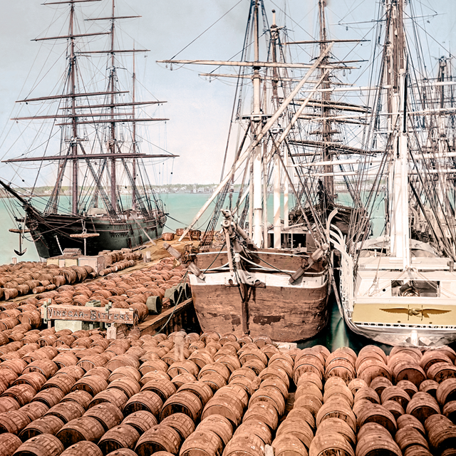 Colorized image of historic whale ships on the waterfront.
