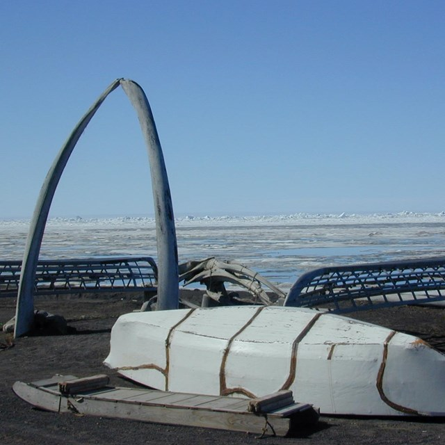 A canoe, frame, and whale bones sit on the beach in Alaska.
