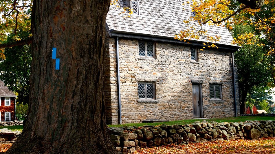 A large, old stone house with wooden shingles. A dark brown tree in the foreground.