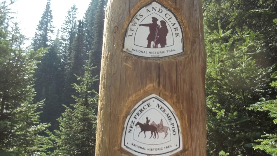 A tree with two trail markers, the Nez Perce National Trail and the Lewis and Clark Trail.